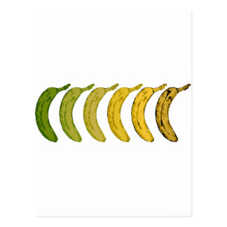 Bananen-Evolution Postkarte