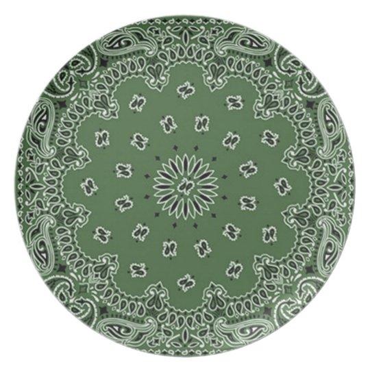 Bandana-Druck-Melamin-Platten-Grün Teller