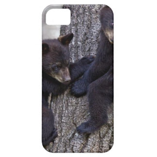 Bär paart Baum-kletternde iPhone 5 Hülle
