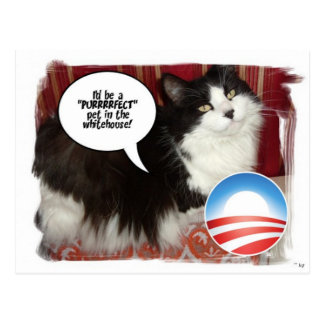 Barack Obama Weiß-House-Haustier Postkarte
