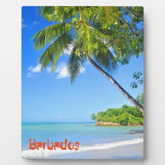 Barbados Fotoplatte