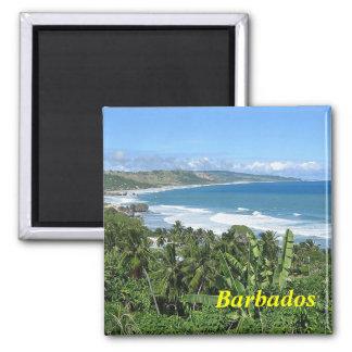 Barbados-Magnet Magnete