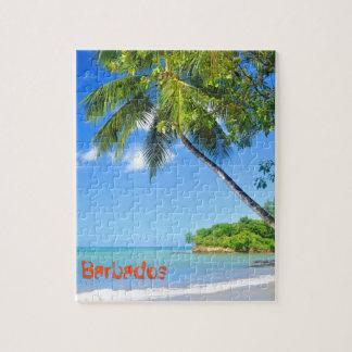 Barbados Puzzle