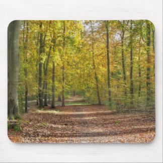 Barnimer Land Wald Mauspads