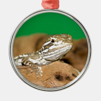 Bartagame Rundes Silberfarbenes Ornament