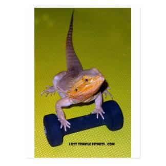 bärtiger Drache, der mit Dumbbell trainiert Postkarte