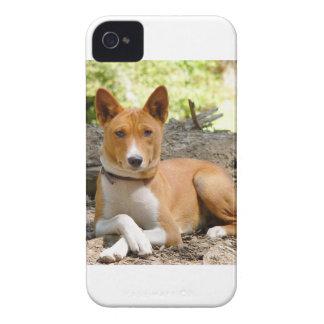 Basenji Hund Case-Mate iPhone 4 Hüllen