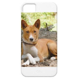 Basenji Hund iPhone 5 Schutzhülle