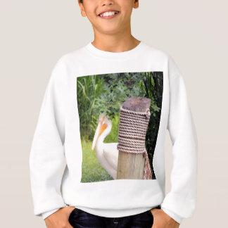 Bashful2 Sweatshirt