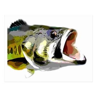 Bass-Fische Postkarte