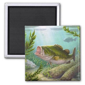Bass-Fische Quadratischer Magnet
