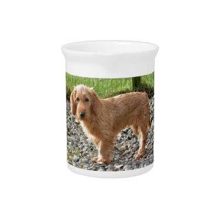 Basset Fauve de Bretagne Dog Getränke Pitcher