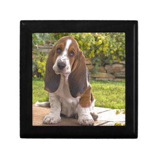 Basset Hound-Hund Erinnerungskiste