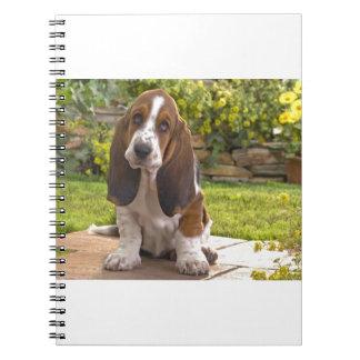 Basset Hound-Hund Notizblock