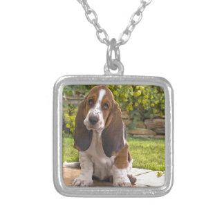 Basset Hound-Hund Versilberte Kette
