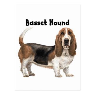 Basset Hound Postkarte