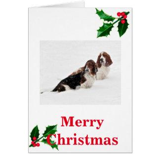 Basset im Schnee auf Weihnachtskarte Karte