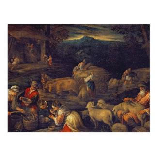 Bauernhof-Innen- oder scherende Schafe Postkarte