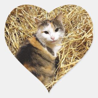 Bauernhof-Katzen-Aufkleber Herz-Aufkleber
