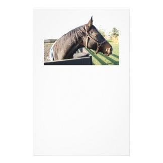 Bauernhof-Pferd Briefpapier