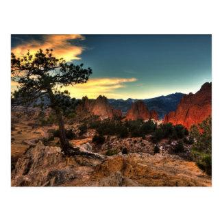 Baum am Sonnenaufgang Postkarte