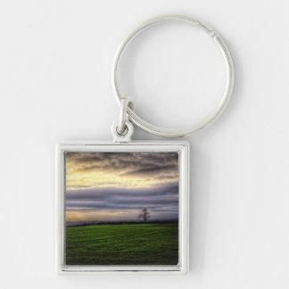 Baum an Sonnenuntergang keychain Schlüsselbänder
