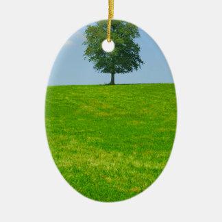 Baum auf einem Gebiet Ovales Keramik Ornament