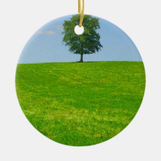 Baum auf einem Gebiet Rundes Keramik Ornament