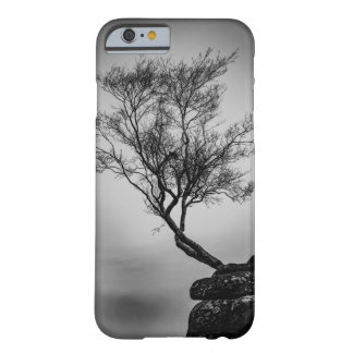 Baum auf einer Klippe Barely There iPhone 6 Hülle