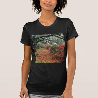 Baum-Azaleen-Eichen-Magnolie Charleston T-Shirt