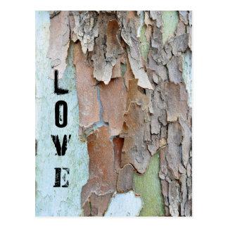Baum-Barke, Liebe, rustikal Postkarte