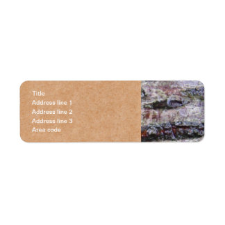 Baum-Barken-Foto-personalisierte Post-Aufkleber Kleiner Adressaufkleber