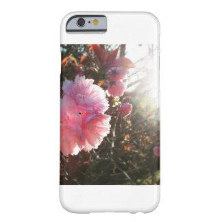 Baum-Blüte am Sonnenuntergang-Telefon-Kasten Barely There iPhone 6 Hülle