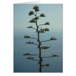 Baum, der das Meditteranean Meer übersieht Karte
