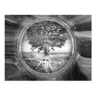 Baum der Leben-Hoffnung Schwarz-weiß Postkarte