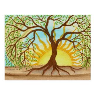 Baum der Leben-Postkarte Postkarte