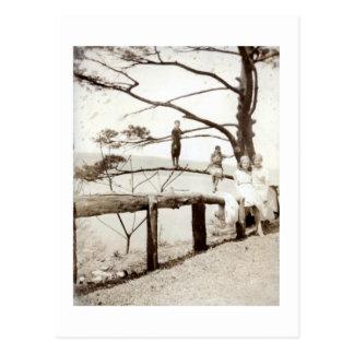 Baum der Vergangenheit Postkarte