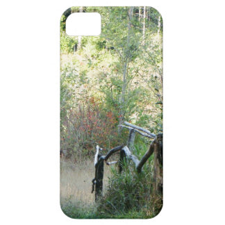 Baum- des Waldesrotholz-wandernde Spur iPhone 5 Etuis