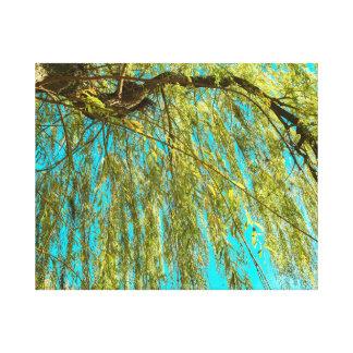 Baum-Foto der weinenden Weide Leinwanddruck