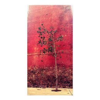 Baum Fotokarte