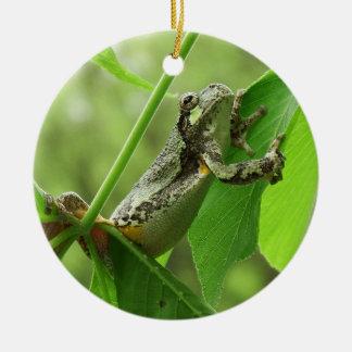 Baum-Frosch, der an hängt Keramik Ornament