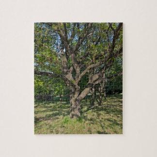 Baum im Frühjahr Puzzle