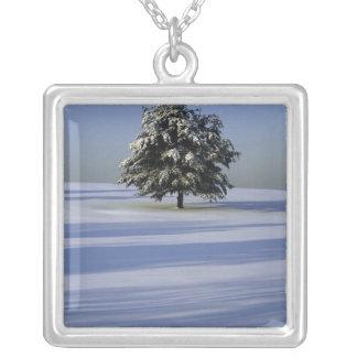 Baum im Schnee umfaßte Landschaft Versilberte Kette