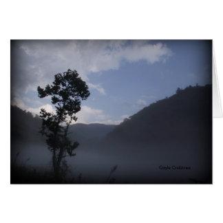 Baum nahe Fontana-Verdammung, North Carolina Karte