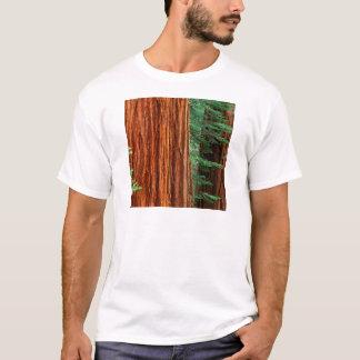 Baum-riesiger Mammutbaum Mariposa Waldung Yosemite T-Shirt