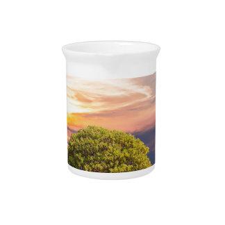 Baum-Seegras-Natur-Ozean-Sommer-Landschaft Sun Krug