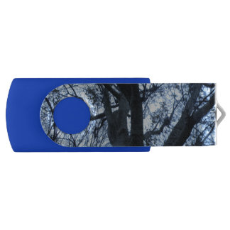 Baum-Silhouette-Fotografie USB-Antrieb USB Stick