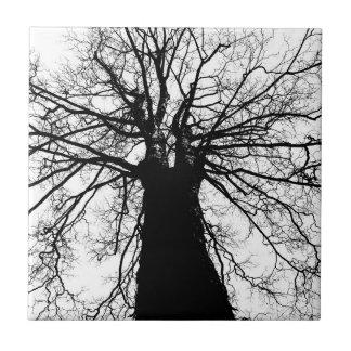 Baum-Silhouette in Schwarzweiss Kleine Quadratische Fliese