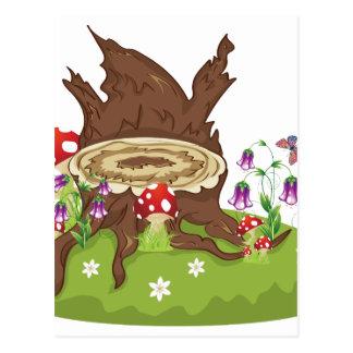 Baum-Stumpf und Pilze Postkarte
