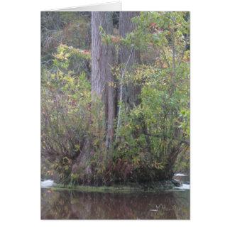 Baum umgeben durch Wasser Grußkarte